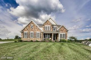 420 Irish Rebel Road, Westminster, MD 21157 (#CR9954451) :: Pearson Smith Realty