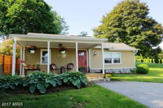 3313 Maple Grove Road, Manchester, MD 21102 (#CR9954819) :: Pearson Smith Realty