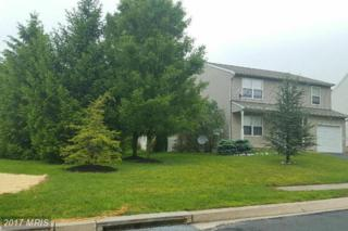 201 Montpelier Court, Westminster, MD 21157 (#CR9954927) :: Pearson Smith Realty