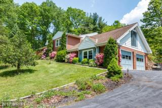 2021 Snydersburg Road, Westminster, MD 21157 (#CR9956206) :: Pearson Smith Realty