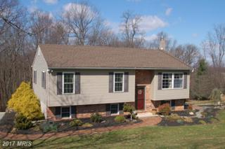 2684 Mount Ventus Road, Manchester, MD 21102 (#CR9956539) :: Pearson Smith Realty