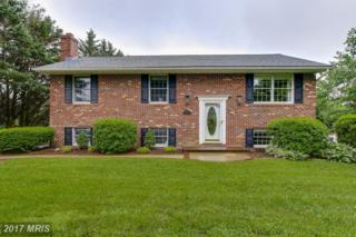 2705 Chippewa Court, Finksburg, MD 21048 (#CR9957607) :: ExecuHome Realty