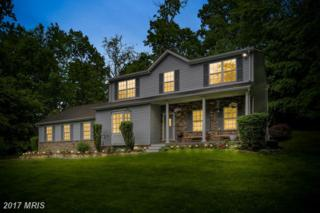 1347 Fridinger Mill Road, Westminster, MD 21157 (#CR9958956) :: Pearson Smith Realty