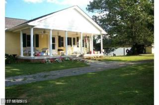 11434 Mitchell Road, Mitchells, VA 22729 (#CU9835883) :: LoCoMusings