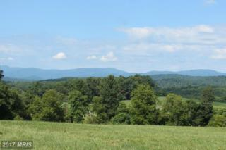 8780 Old Stillhouse Road, Rixeyville, VA 22737 (#CU9842130) :: Pearson Smith Realty