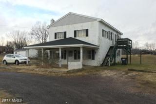 13056 Rixeyville Road, Culpeper, VA 22701 (#CU9845427) :: LoCoMusings