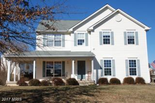 798 Prosperity Road, Culpeper, VA 22701 (#CU9848060) :: LoCoMusings