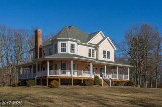 13545 Eggbornsville Road, Culpeper, VA 22701 (#CU9848773) :: Pearson Smith Realty