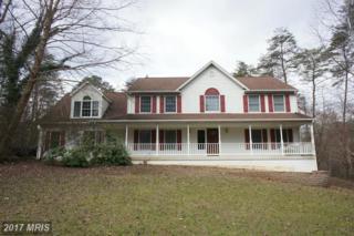 2749 Wildwood Circle, Amissville, VA 20106 (#CU9849598) :: LoCoMusings