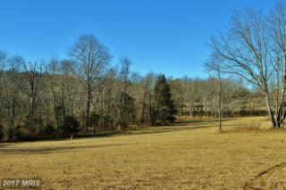 Whisper Hill Road, Culpeper, VA 22701 (#CU9855147) :: Pearson Smith Realty