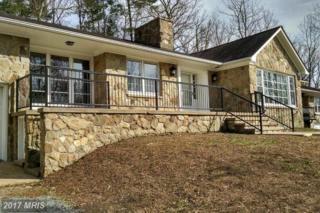 6146 Duncan Trail, Reva, VA 22735 (#CU9864256) :: Pearson Smith Realty