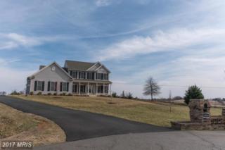 19505 Meadowvale Court, Culpeper, VA 22701 (#CU9869512) :: Pearson Smith Realty