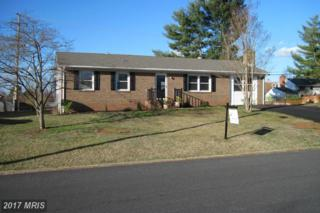 310 Chestnut Drive, Culpeper, VA 22701 (#CU9871475) :: LoCoMusings
