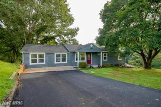 9159 Heritage Drive, Culpeper, VA 22701 (#CU9872047) :: Pearson Smith Realty