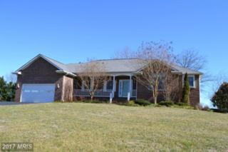 17341 Pelham View Drive, Culpeper, VA 22701 (#CU9876088) :: LoCoMusings