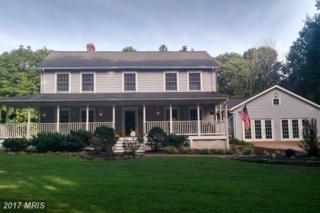 21183 Old Orange Road, Culpeper, VA 22701 (#CU9877009) :: Pearson Smith Realty