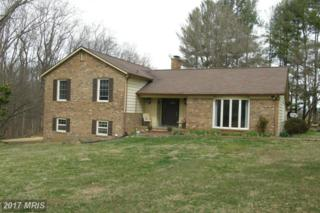 13223 Alum Springs Road, Culpeper, VA 22701 (#CU9880418) :: LoCoMusings