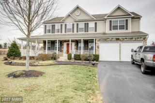 14028 Belle Avenue, Culpeper, VA 22701 (#CU9880686) :: LoCoMusings