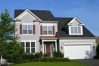 1021 Scarlet Lane, Culpeper, VA 22701 (#CU9889285) :: LoCoMusings