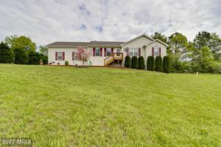 7279 Crockett Avenue, Rapidan, VA 22733 (#CU9893083) :: Pearson Smith Realty