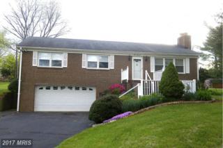 345 Willow Lawn Drive, Culpeper, VA 22701 (#CU9893776) :: LoCoMusings