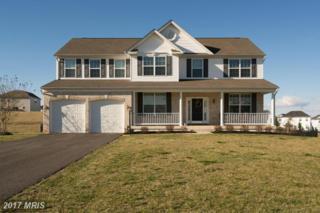 14017 Belle Avenue, Culpeper, VA 22701 (#CU9895231) :: LoCoMusings