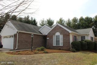 1510 Addie Lane, Culpeper, VA 22701 (#CU9895977) :: LoCoMusings