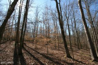 Peaceful Place, Amissville, VA 20106 (#CU9896708) :: Pearson Smith Realty