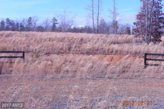 Trotting Trail, Richardsville, VA 22736 (#CU9898728) :: LoCoMusings