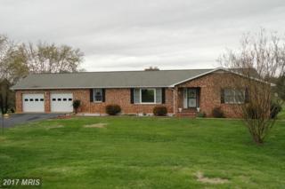 20397 Miller Drive, Culpeper, VA 22701 (#CU9905301) :: Pearson Smith Realty