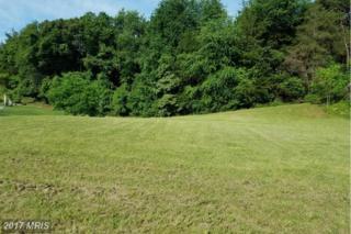 128 Wayland Manor Drive, Culpeper, VA 22701 (#CU9906675) :: Pearson Smith Realty