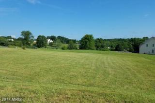 113 Wayland Manor Drive, Culpeper, VA 22701 (#CU9906695) :: Pearson Smith Realty