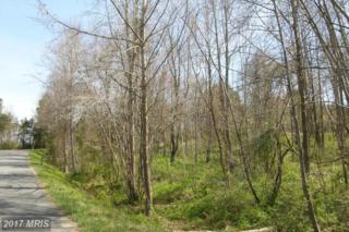 0 Stonehouse Mountain Road, Culpeper, VA 22701 (#CU9912205) :: Pearson Smith Realty
