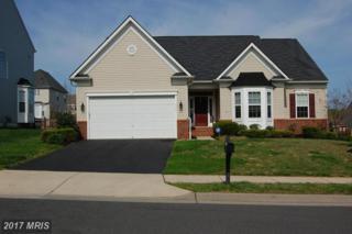 916 Augustine Drive, Culpeper, VA 22701 (#CU9916336) :: Pearson Smith Realty