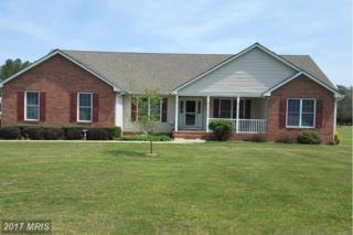 21021 Batna Road, Culpeper, VA 22701 (#CU9917845) :: Pearson Smith Realty