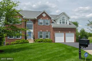 13108 Belle Grove Court, Culpeper, VA 22701 (#CU9921111) :: Pearson Smith Realty
