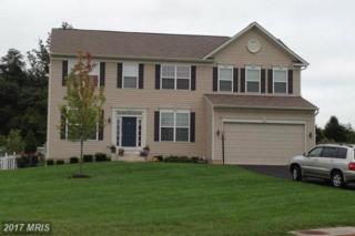 14012 Belle Avenue, Culpeper, VA 22701 (#CU9925212) :: Pearson Smith Realty