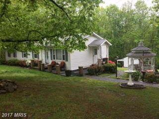 6088 Waterford Road, Rixeyville, VA 22737 (#CU9925948) :: Pearson Smith Realty
