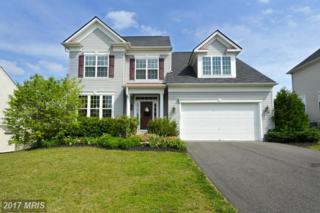 1021 Scarlet Lane, Culpeper, VA 22701 (#CU9931095) :: Pearson Smith Realty