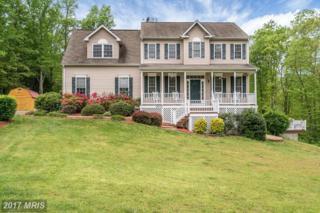 24322 Oak Forest Drive, Rapidan, VA 22733 (#CU9934238) :: Pearson Smith Realty