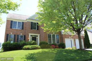 559 Hunters Road, Culpeper, VA 22701 (#CU9934383) :: Pearson Smith Realty