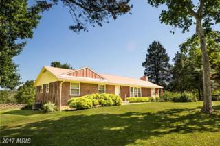 13338 Lake Court, Culpeper, VA 22701 (#CU9934585) :: Pearson Smith Realty