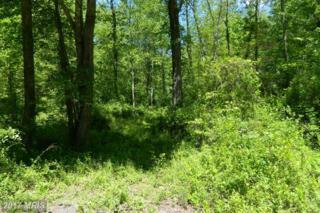 Deerfield Lane, Jeffersonton, VA 22724 (#CU9938787) :: Pearson Smith Realty