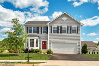 608 Homeplace Drive, Culpeper, VA 22701 (#CU9942584) :: Pearson Smith Realty