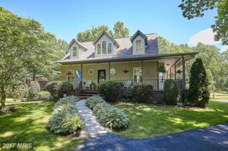 16261 Quail Ridge Drive, Amissville, VA 20106 (#CU9942616) :: Pearson Smith Realty