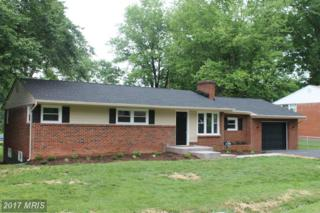 300 Lesco Boulevard, Culpeper, VA 22701 (#CU9951361) :: Pearson Smith Realty