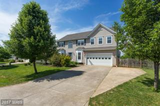 540 Greenbriar Drive, Culpeper, VA 22701 (#CU9952776) :: Pearson Smith Realty