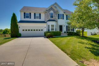 881 Ambleside Drive, Culpeper, VA 22701 (#CU9952984) :: Pearson Smith Realty