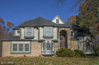 17365 Berkshire Drive, Jeffersonton, VA 22724 (#CU9953424) :: Pearson Smith Realty