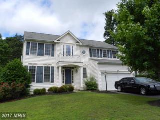 462 Blossom Tree Road, Culpeper, VA 22701 (#CU9958355) :: Pearson Smith Realty